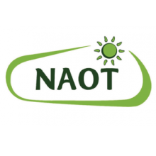 Naot At Fit To Be Tied Shoes Of Ankeny
